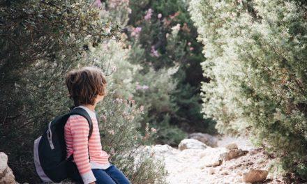 Comment reconnaître que l'enfant développe le bilinguisme passif / réceptif ?